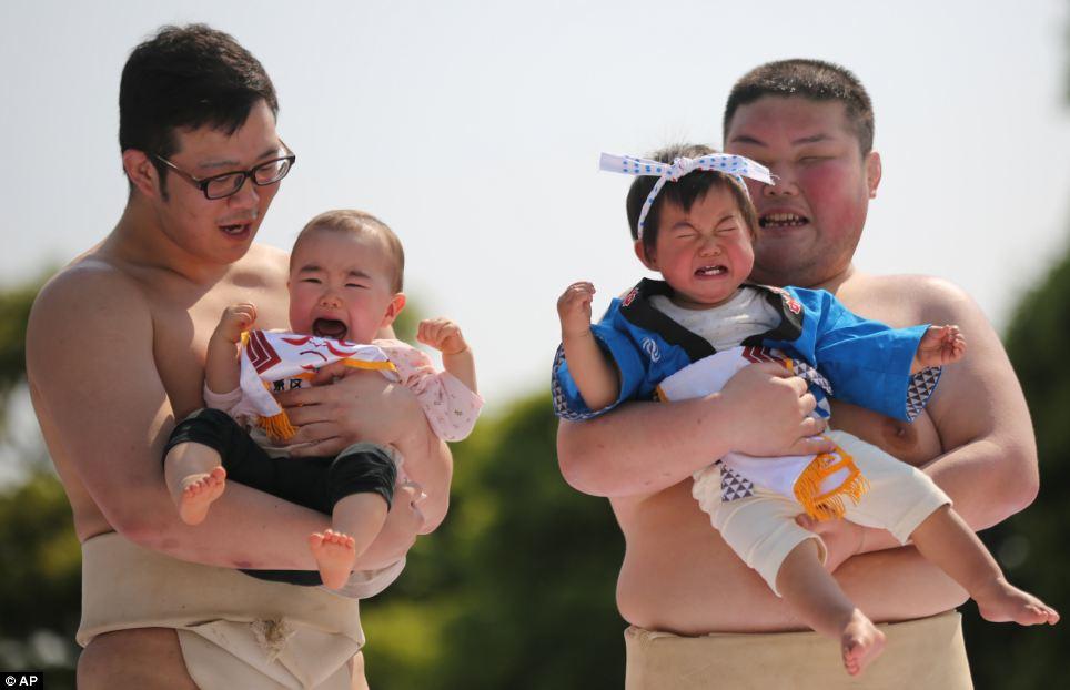 Натпревар на јапонски бебиња во плачење