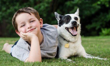 Зошто е добро детето да расте со куче?